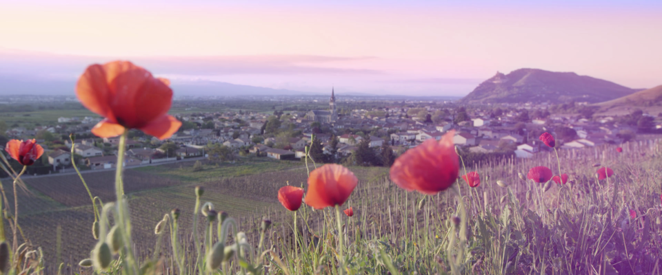 Film tourisme Rhône-Crussol Cornas